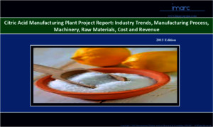 Citric Acid Manufacturing Plant Project Report
