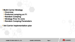 Multi Carrier Strategy and Implementation Plan